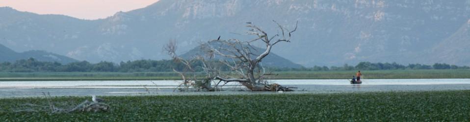Черногория. Часть 3. Каньон реки Тара и Скадарское озеро