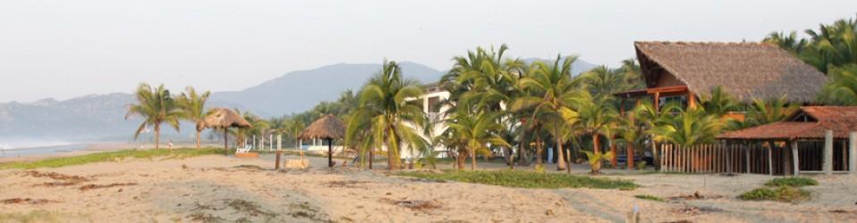 Путешествие по Мексике. Дни 6,7,8 (4,5,6 декабря). Zihuatanejo. Волонтёрский лагерь.