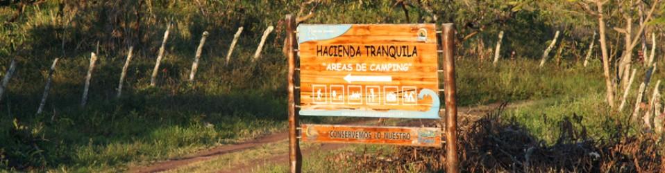 Путешествие по Эквадору. Галапагосские острова. День 1 (4 ноября). Остров San Cristobal. Волонтёрский лагерь.