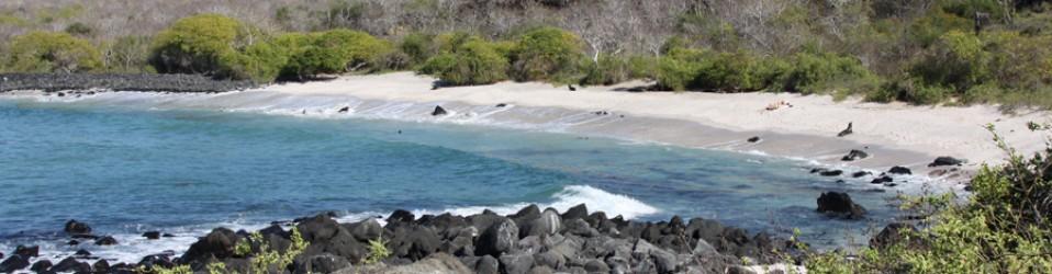 Путешествие по Эквадору. Галапагосские острова. Остров San Cristobal. Вторые выходные. 17, 18 ноября.