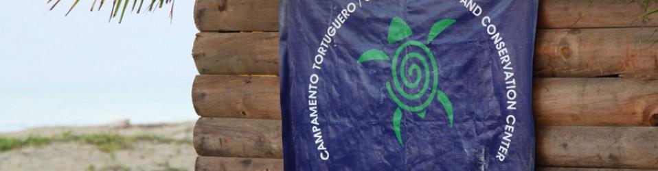 Путешествие по Мексике. День 5 (3 декабря). Zihuatanejo. Волонтёрский лагерь.